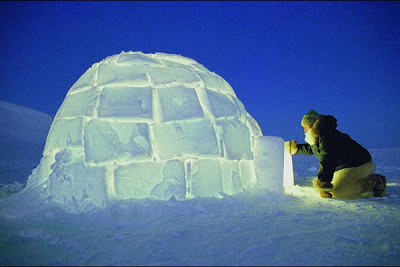 Cold bedroom igloo